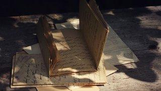 ひだまりの中の古い本